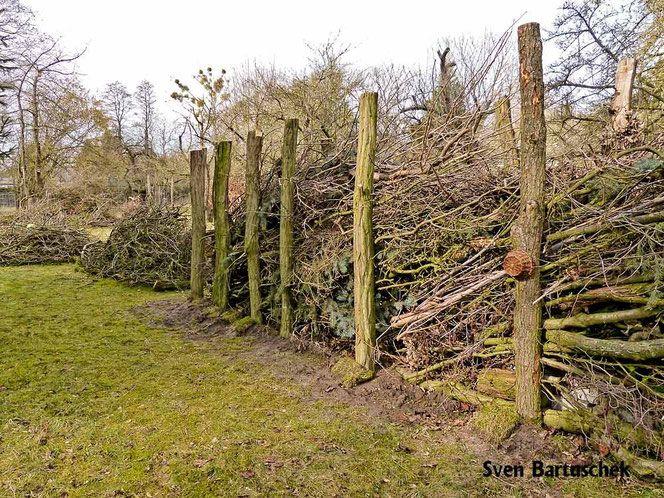Gefullter Totholzzaun Nach Art Des Hauses Wildbienenschutz Im Naturgarten Naturgarten Holzwand Garten Garten