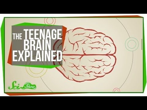 The Teenage Brain Explained - Being a teenager is hard. Especially when hormones play their part in wreaking havoc on the teenage body and brain. In this episode, Hank explains what is happening to the during the angsty-time.