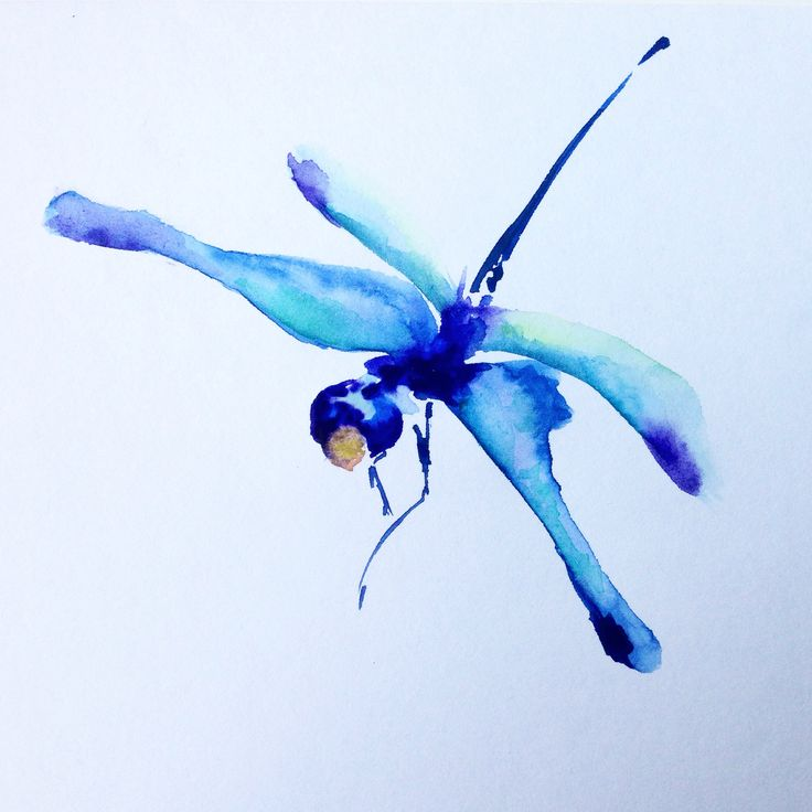 Стрекоза/Dragonfly