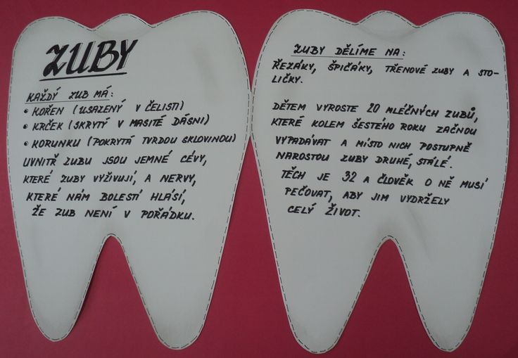 Týden zdraví - Zuby