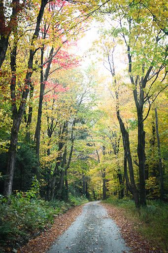 Travelogue: The Berkshires, Western Massachusetts