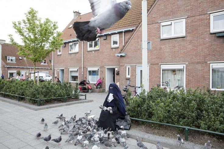 Fotograaf:  Peter de Krom  De foto hoort bij de negendelige serie van Freek Schravesande en Carola Houtekamer over de Haagse Spoorwijk.  Deze vrouw, gehuld in een niqaab, zit vrijwel iedere dag voor de Albert Heijn waar zij de duiven voert. Toen ik haar fotografeerde en vroeg of ze het vervelend vond dat ik foto's maakte antwoordde ze met een prachtig Haags accent: 'Je gaat je gang maar hoor, je ziet me toch niet'.   www.peterdekrom.nl