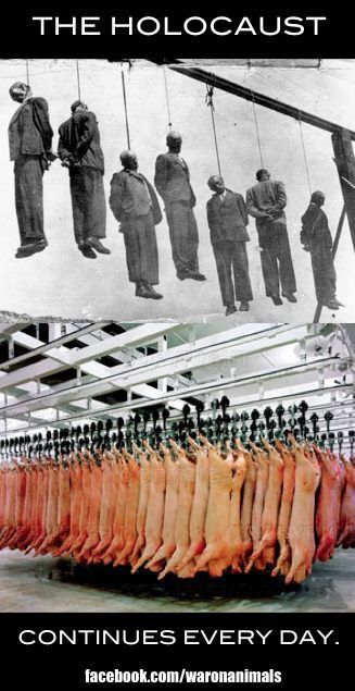How the HELL can you Compare the Holocaust To killing animals!!! What a screwed up race we have become!!! When people care more about damn animals than they do their own kind!!!