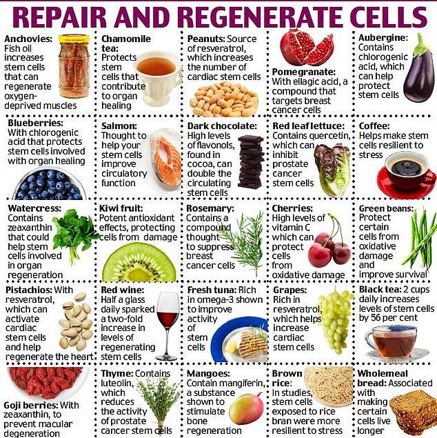 Harvard Scientist Dr William Li Reveals The Life Saving Foods Food For Kidney Health Health And Nutrition William Li