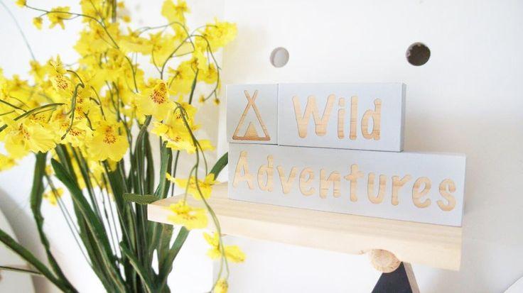 Image of Wild Adventure Blocks