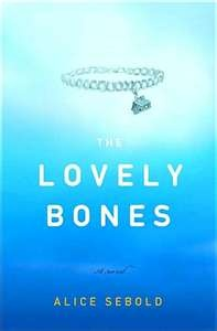the lovely bones essay plan