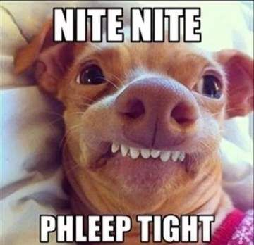 Nite Nite - Goodnight Meme
