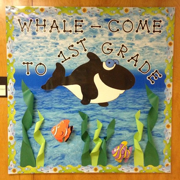 Whale Classroom Decor ~ Top ideas about whale done on pinterest cricut