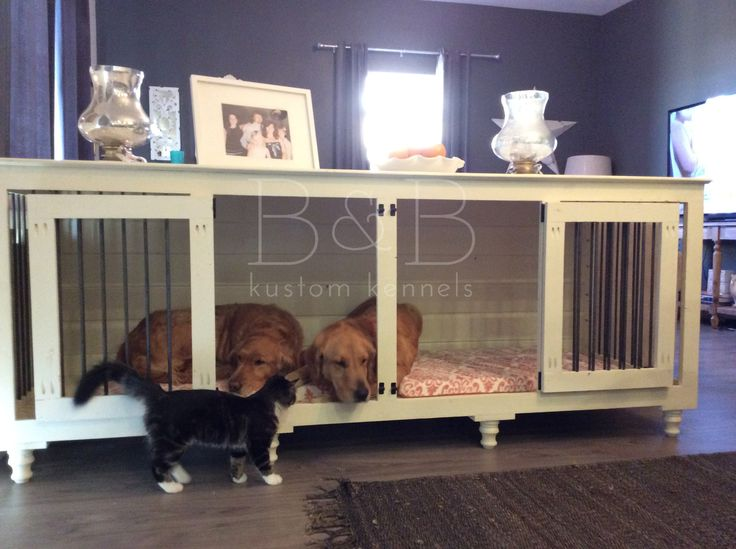 Best 25 Indoor Dog Kennels Ideas On Pinterest Indoor Dog Rooms Dog Spaces And Dog Bed Stairs