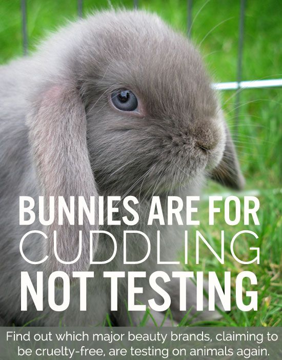 This is a great blog which highlights safe products to use so that we're not supporting companies who test on live animals.