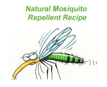 Easy Homesteading: Natural Mosquito Repellent Recipe
