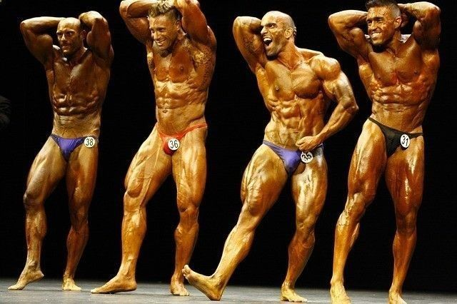 Search Championship physique www.INSTAPIFY.com Premier bodybuilding is a book by steve davis focusing on body workouts and nutrition. #arnold #fitlife #chest #bcaa #creatine #ast #sports #supplement #ultimatenutrition #whey #mhp #ripped #men #igers #instabb #peck #me #tattoo #male #swole #strenght #instagood #vascular #fitforlife #weightraining #fitnesslifestyle #muscular #leangains #fitfreak #bodybuilders