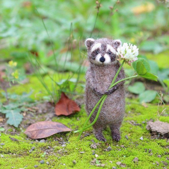 花摘み中のアライグマ君に出会いました。  #羊毛フェルト#ハンドメイド#needlefelt#handmade#アライグマ#動物#animal#人形#シロツメグサ#四つ葉のクローバー