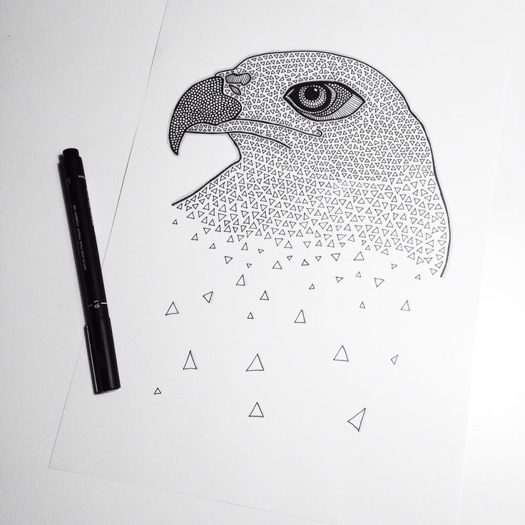 Eagle illustration with promarkers and fineliners