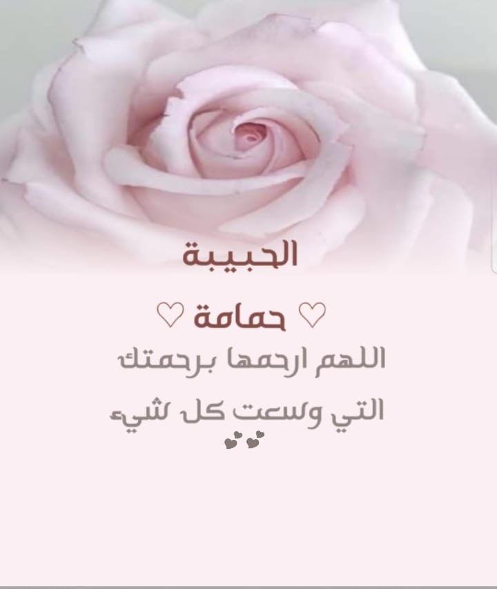 اللهم ارحم حافظه القرآن ومعلمه القرآن اختی حمامه Rose Plants Flowers