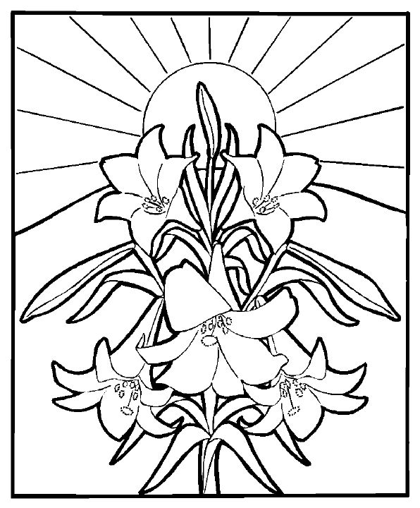 1055 best Holiday Coloring Pages images on Pinterest | Easter ...