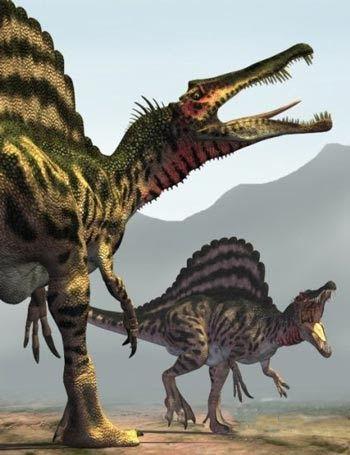 Les 25 meilleures id es de la cat gorie dinosaure - Dinosaure marin carnivore ...