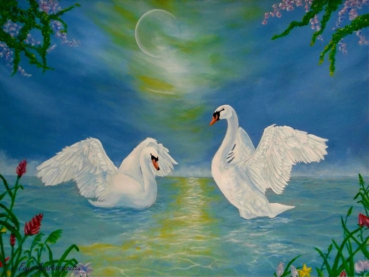 swans,painting,lake,scene,wildlife,nature,romantic,love,night,dancing,vivid,colorful,turquoise,blue,beautiful,awesome,cool,superb,amazing,fabulous,magnificent,contemporary,realistic,figurative,fine,oil,wall,art,images,home,office,decor,artwork,modern,items,ideas,for sale,redbubble