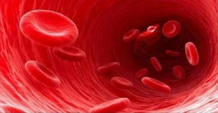 Infarto jamais: desentupa as artérias e proteja seu coração com estes 8 remédios caseiros!