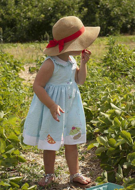 Sweet Strawberry Picking .... Rowan from JenLovesKev