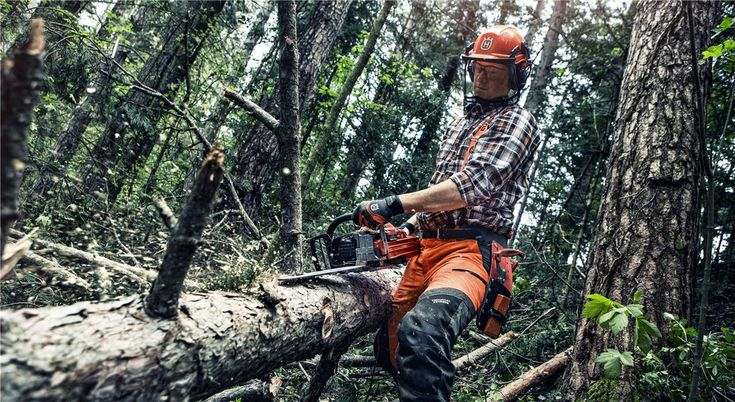 The forest is a habitat for plants and animals, a valuable provider of wood and other resources, as well as a place we come to for peace of mind. At Husqvarna we hope that many generations to come will have the same chance to experience the forest as we have today. When we fell trees, we must therefore consider not only the plants and animals that live in the forest, but also the people who enjoy it, like outdoor enthusiasts. This is especially important when felling near densely populated…