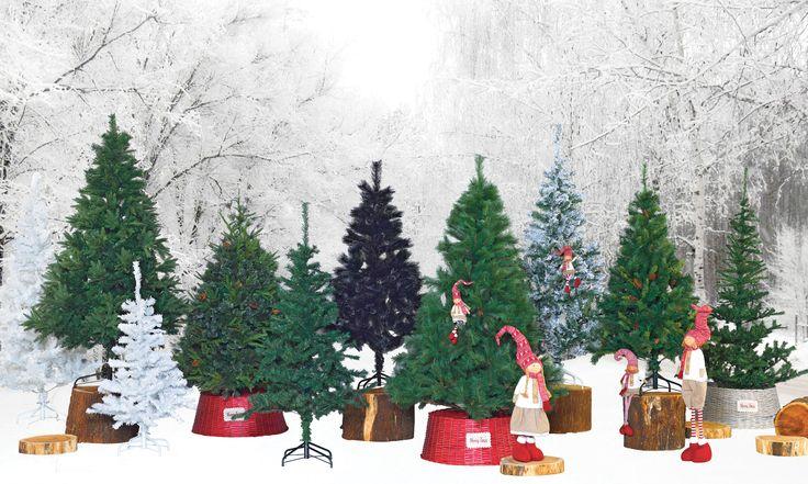 Árvores Natal 2016