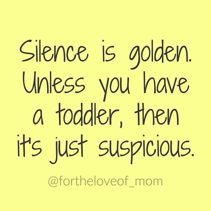 17 best funny toddler quotes on pinterest toddler quotes