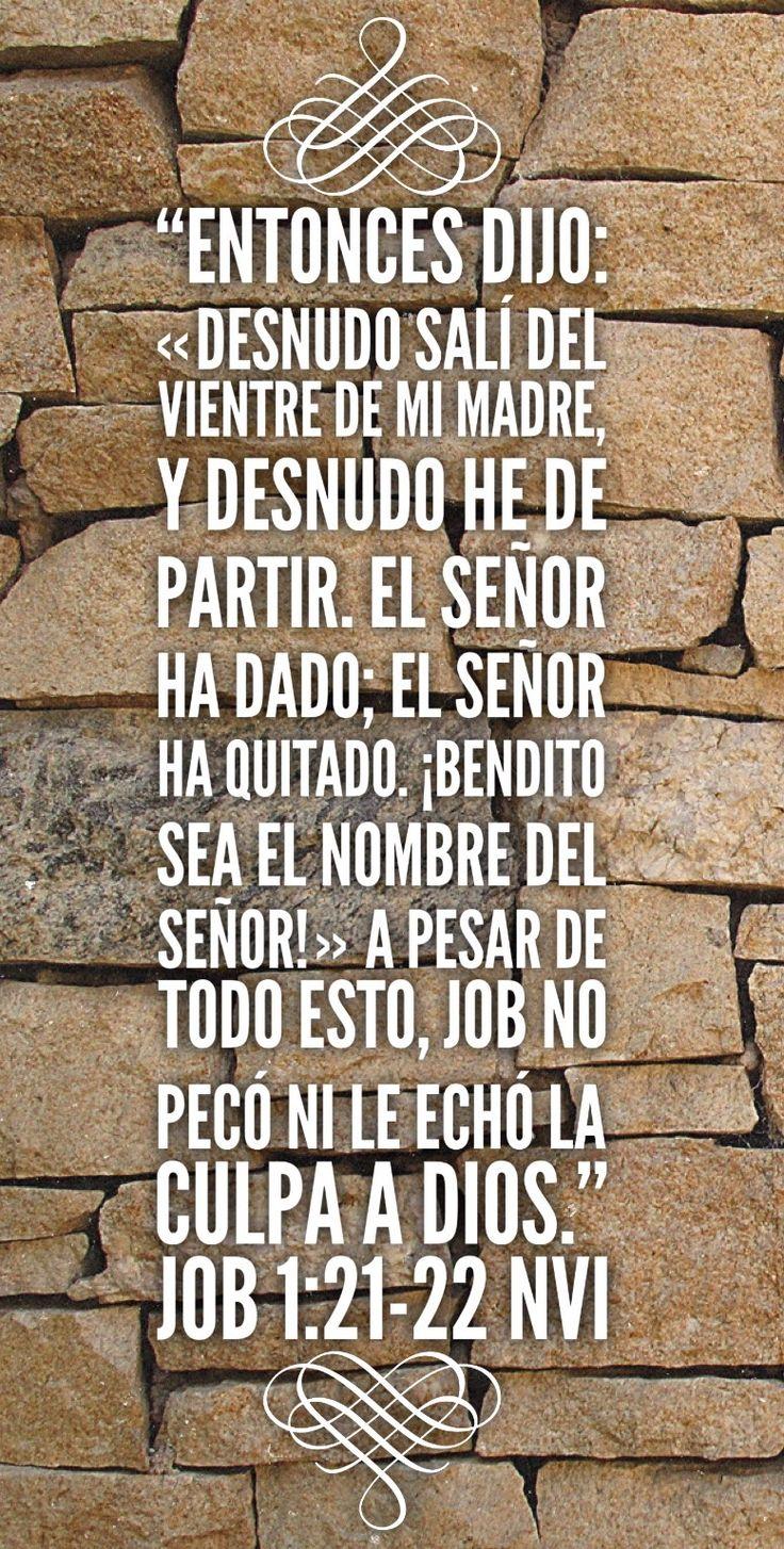 #Job #Biblia #versiculo