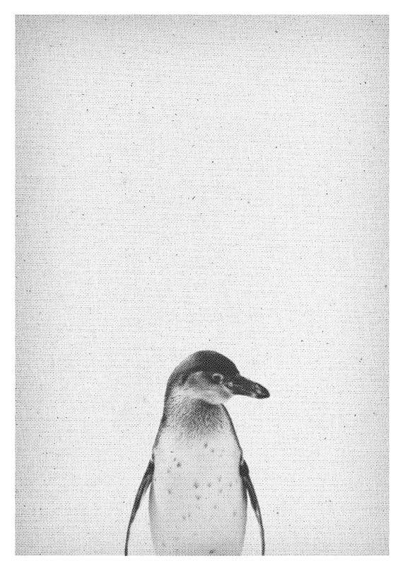 Pinguin Print - Safari Kindergarten Wall Art, Africa Tier, schwarz weiß Deko, druckbar Poster, Download - Kinder - Wohnzimmer, Halftone Poster, Schlafzimmer Deko  Es handelt sich um einen DIGITALEN, keinen pysischen Artikel. Deine Bestellung beinhaltet nur den digitalen Download-Artikel, keine Bilderrahmen oder Dekorationen. Aus diesem Grund entstehen auch keinerlei Versandkosten. ......................<3 Du bekommst: Halftone Pinguin Wall Art:  1. höchte Auflösung (300dpi) JPG Dokument…