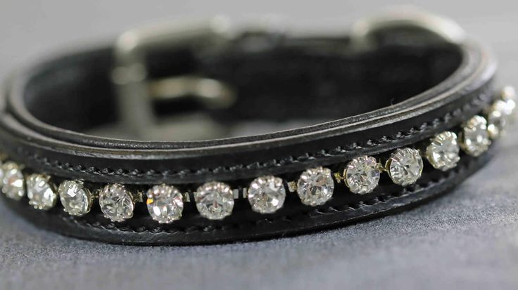 DC013 - Clear Single Row Crystal Dog Collar | Flexible Fit Equestrian