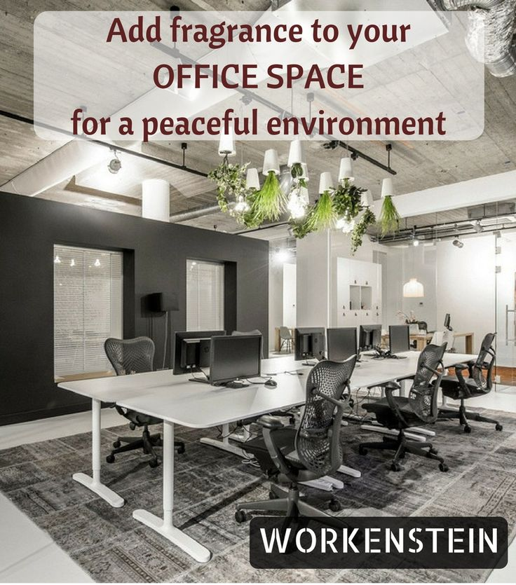 Add allure to your Office Space  By adding some Fragrance to it #Best #Commercial #Office #Space for #Rent in #Chennai  #WORKENSTEIN #Property #OffShore  #Off #Shore #Development #Centre #Business #Center  #Fully #Furnished  https://www.workenstein.com/category/business-centre-in-hyderabad/