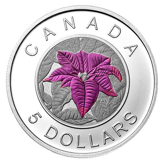 Fine Silver Coin with Niobium Colouring - Flowers in Canada Series - Poinsettia - Mintage: 6,000 (2014)