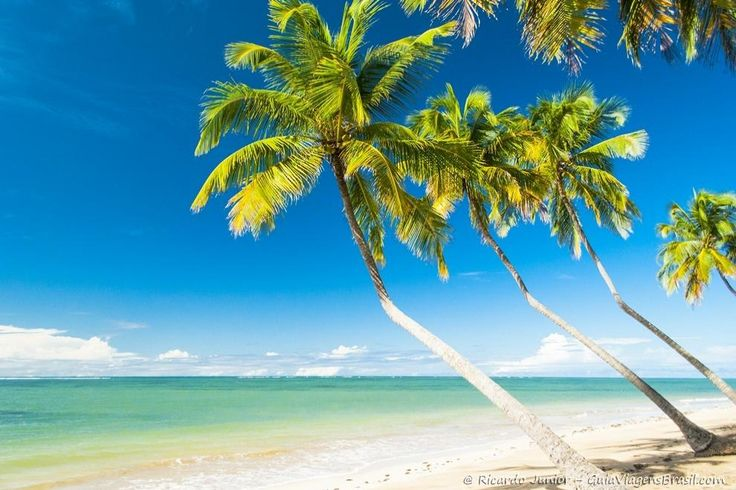 Praia do Patacho, em Porto das Pedras, Alagoas. Veja as melhores praias do Brasil >>> http://www.guiaviagensbrasil.com/blog/category/melhores-praias/
