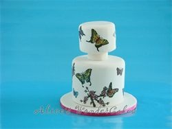 Voorbeeld voor een dagworkshop taart beschilderen