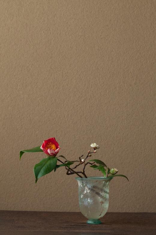 2012年3月8日(水)この時期、祝杯を上げる方も多いのでは。 花=椿「祝の盃」(ツバキ/イワイノサカズキ)、雲龍梅(ウンリュウバイ) 器=ローマングラス碗(ローマ時代)
