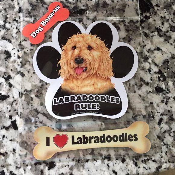 I love labradoodles magnet Labradoodles magnet ! Looking for goldendoodle Other