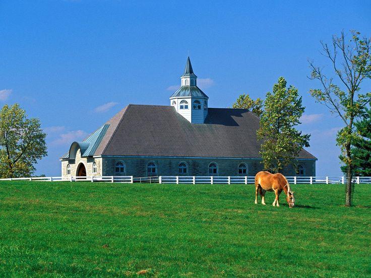 Lexington: Horses Farms, Farms Pictures, The Farms, Hors Farms, Children, Lexington Kentucky, Engagement Ring, Lexington Ky, Manor House