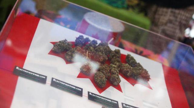 Es war eines seiner Wahlkampfversprechen. Jetzt zieht Kanadas Premier Trudeau die Legalisierung von Marihuana durch: Der Genuss soll im Laufe des nächsten Jahres straffrei werden. Trudeau kann auf …
