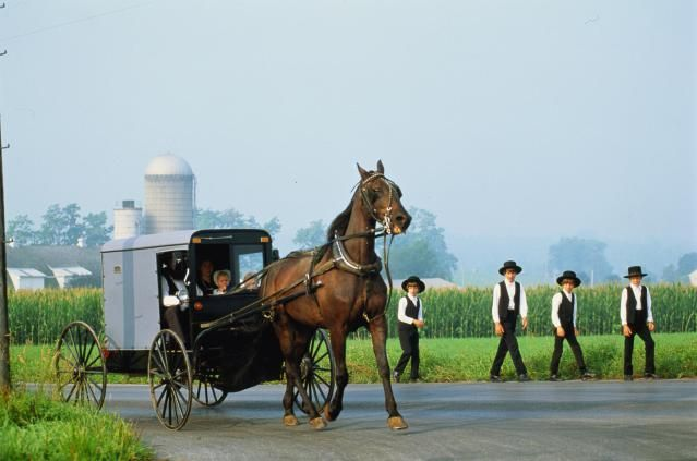 What the Amish Really Believe and Practice