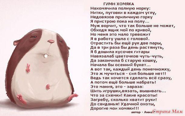 Гимн Хомяка