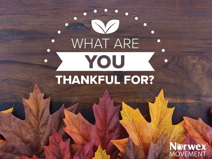 Thanksgiving is as much about gratitude than it is about turkey and cranberry sauce. Find out what Norwex Movement members are the most thankful for this year!