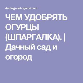 ЧЕМ УДОБРЯТЬ ОГУРЦЫ (ШПАРГАЛКА). | Дачный сад и огород