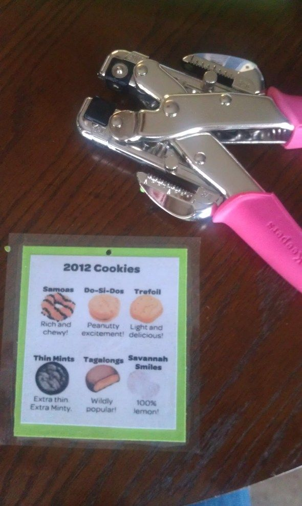 DIY Cookie cheat sheet Lanyards. OMG, this idea is GENIUS!! Seriously. Doing this next year for my troop!