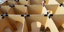 Amb capses de cartró