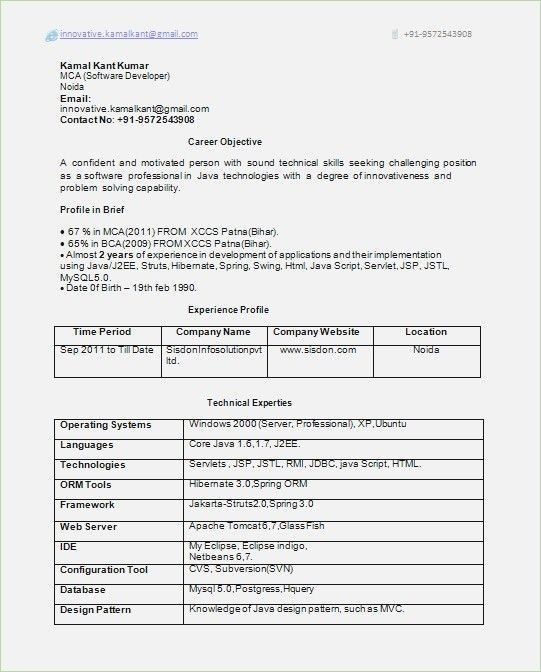 Resume Format 10 Years Experience Resume Format Resume