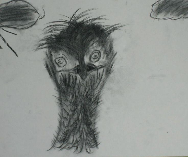 Emu. Charcoal drawing.
