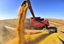 Cultivar de soja, uma plantadeira gigante e sistema de segurança estão entre as tecnologias que encantaram produtores