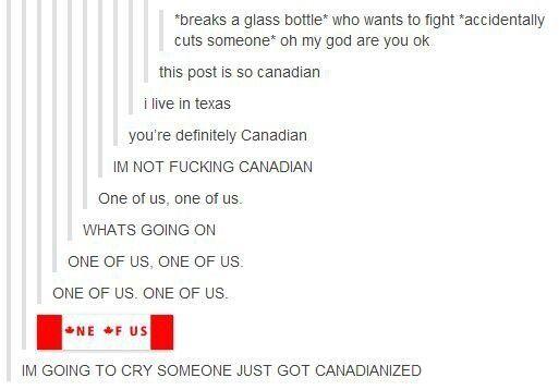 somone just got Canadianized