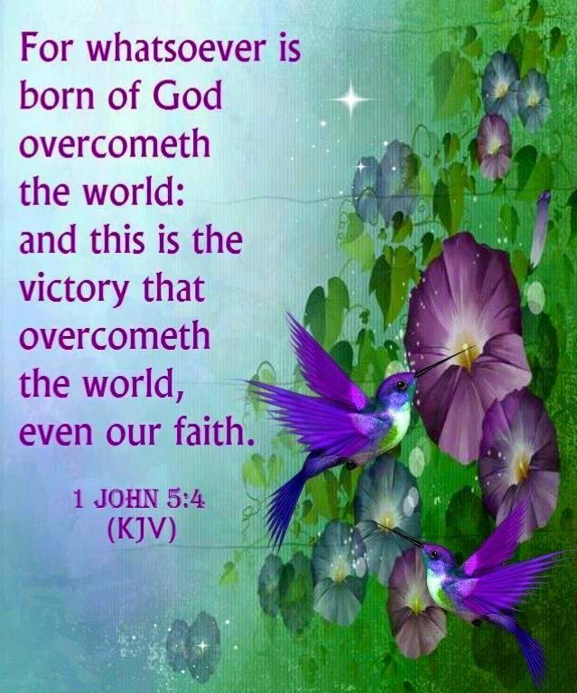 1 john 5 4 kjv bible scriptures pinterest 1 john
