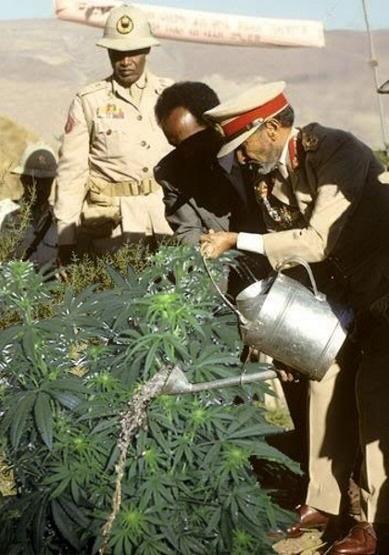 Haile Selassie. Is his Highness watering ganga???  Wtf....